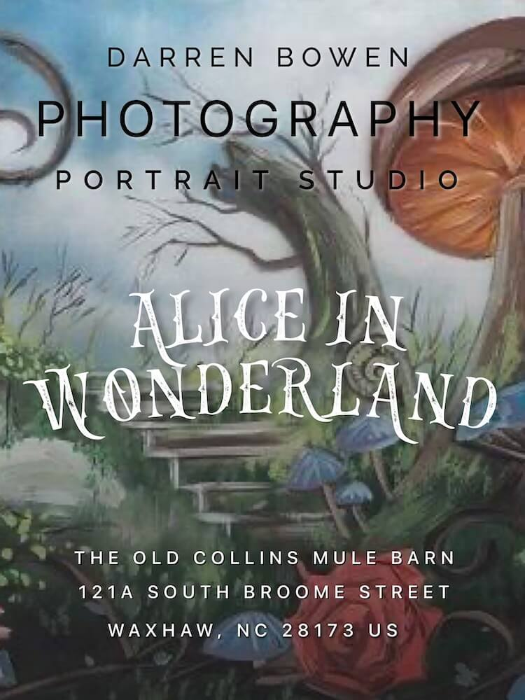 Alice and Wonderland Poster